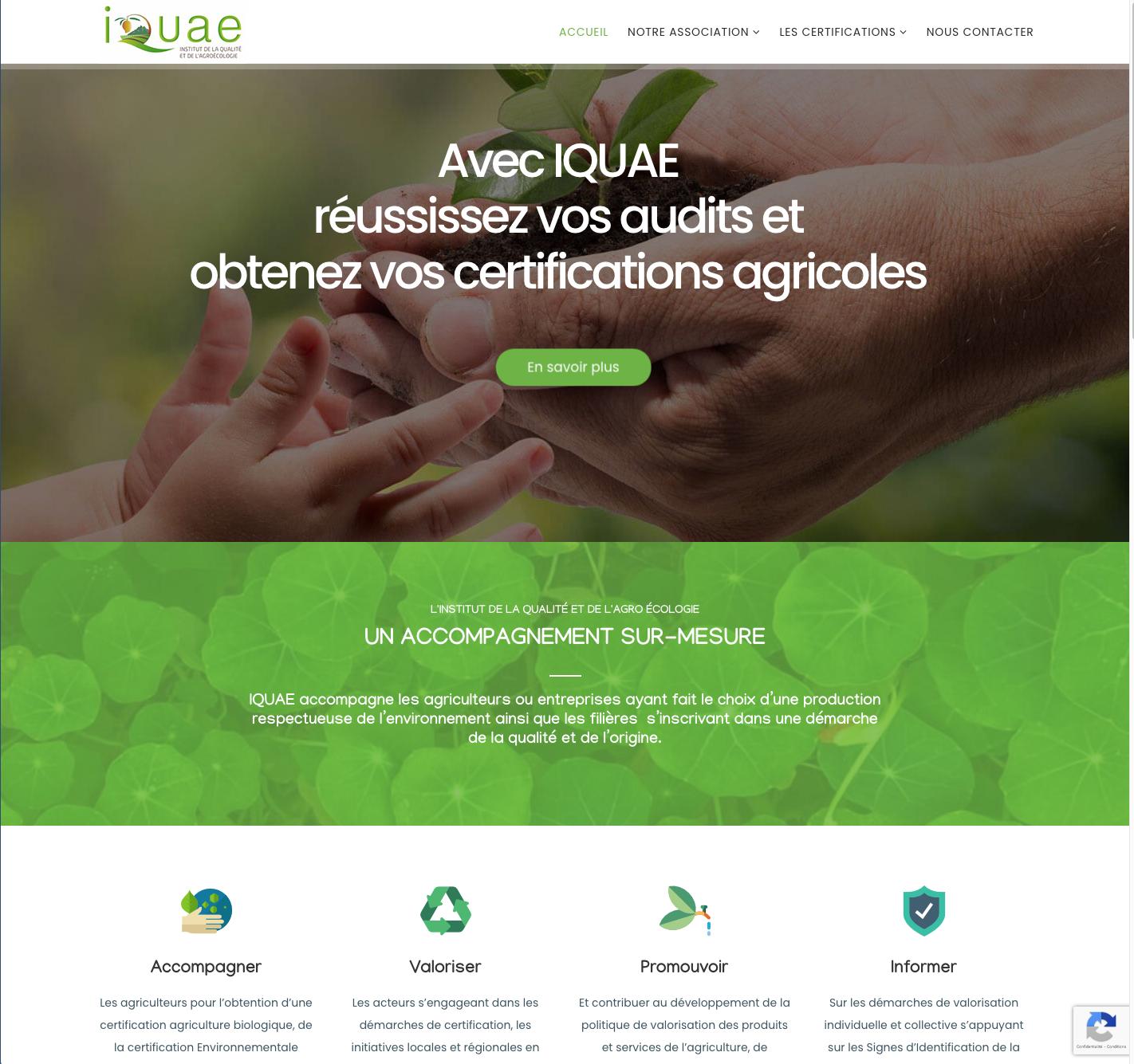 Site IQUAE